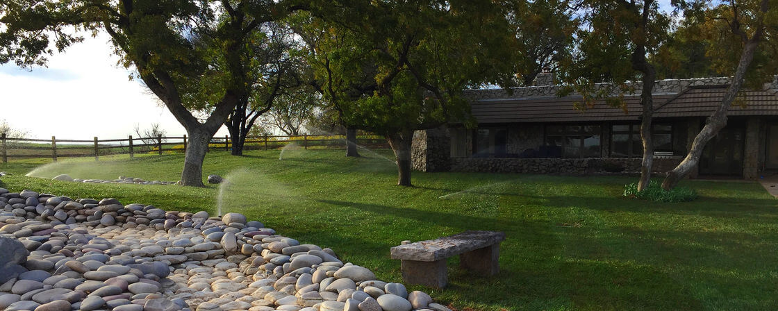 Photo of Beautiful New Lawn with Sprinkler System