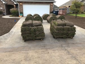Fresh Sod Ready to be Installed