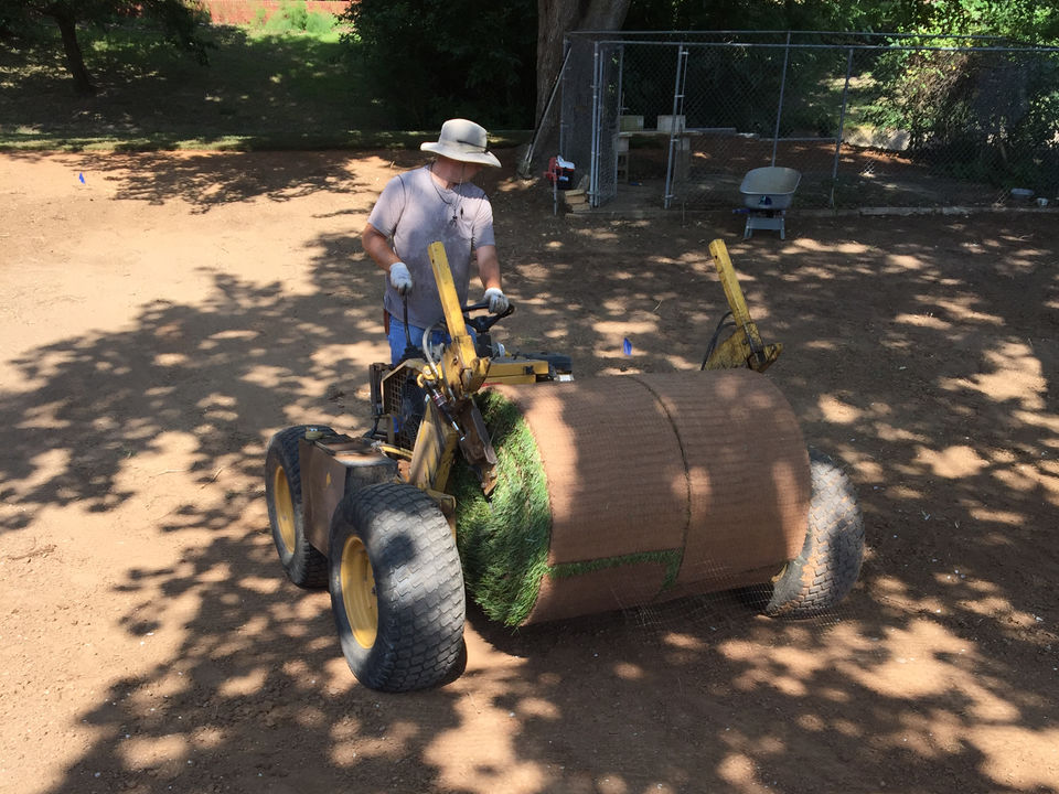 Sod Installation, Removal, and Replacement Services in the